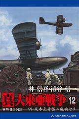 真・大東亜戦争 12